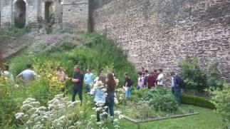Des élèves dans le jardin médiéval